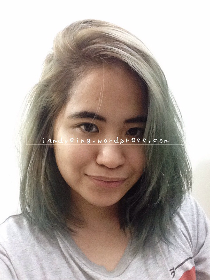 1.5 – 2 weeks after application, toned roots, hair color back to washed up teal.