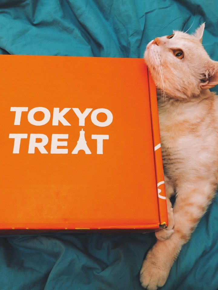 TOKYO TREAT Subscription Box: APRIL 2019 (Easter Surprise)